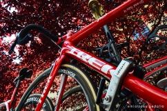 Giro d'Italia 2017 Trek