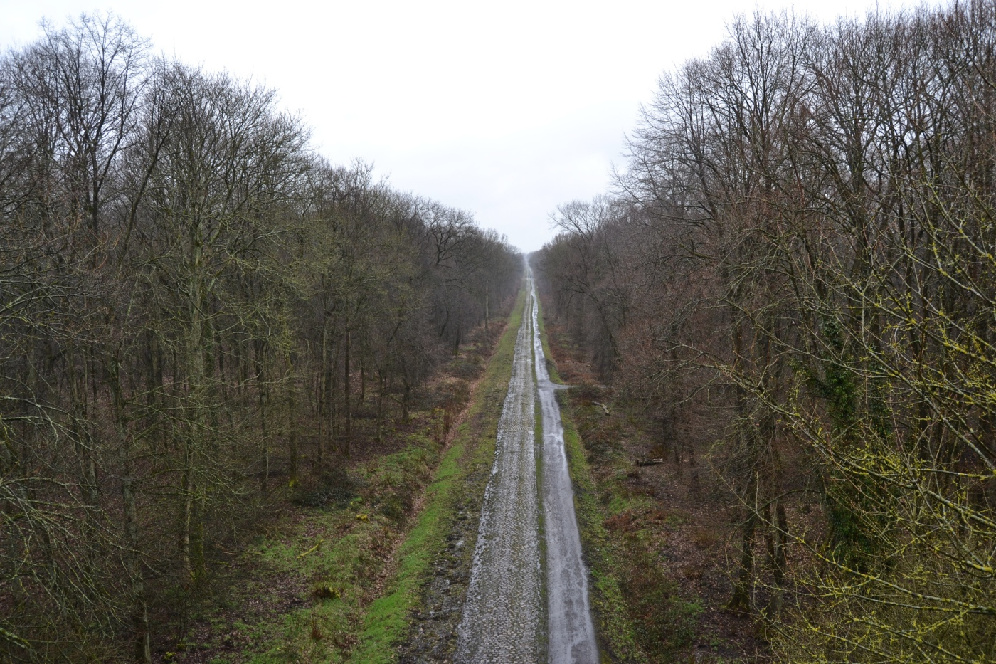 Arenberg foresta inferno del nord