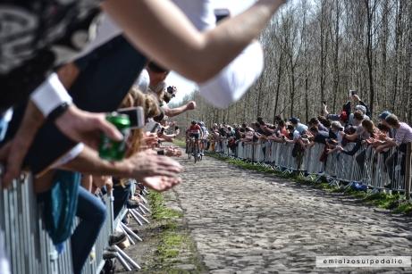Paris-Roubaix | Arenberg